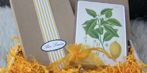 Giveaway: 5 Readers Each Win $50 Bon Lemon Gift Certificates (for Jewelry, Handbags and more!)