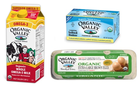 picture relating to Organic Valley Coupons Printable titled Natural and organic Valley: Preserve upon Milk, Butter, and Eggs - Hip2Preserve
