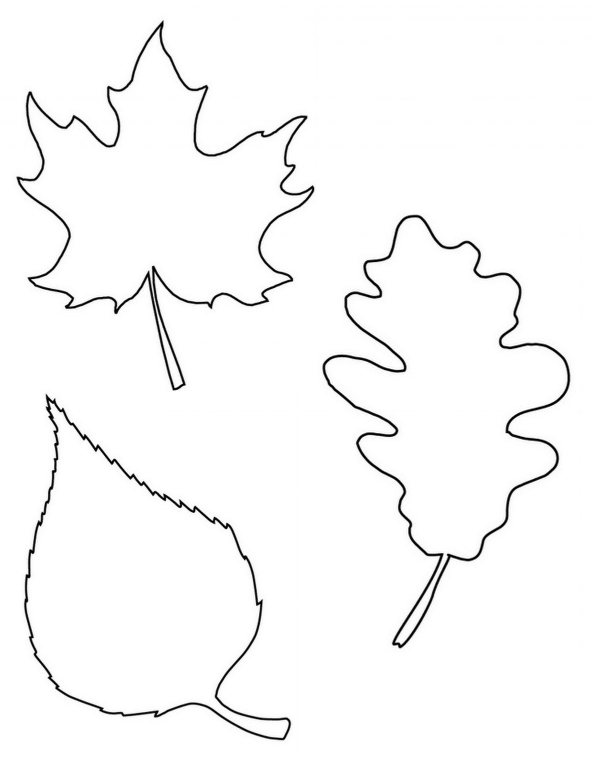 free fall leaf printable