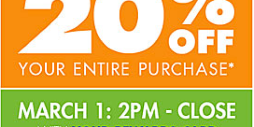 Big Lots: 20% Off Your ENTIRE Purchase (Valid on 3/1 for Buzz Club Members or 3/2 for Everyone)