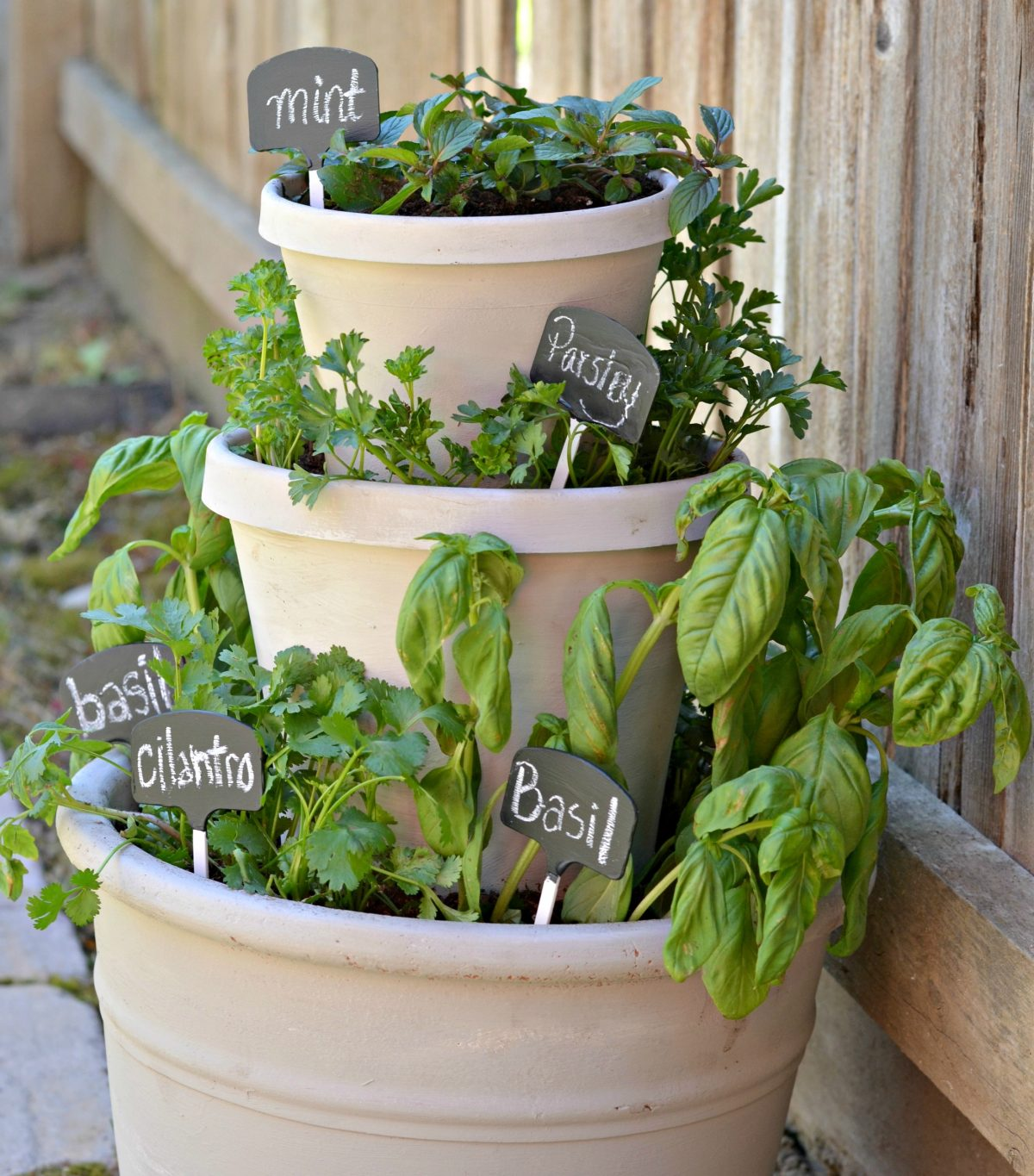 tiered planter with various types of fresh herbs growing inside