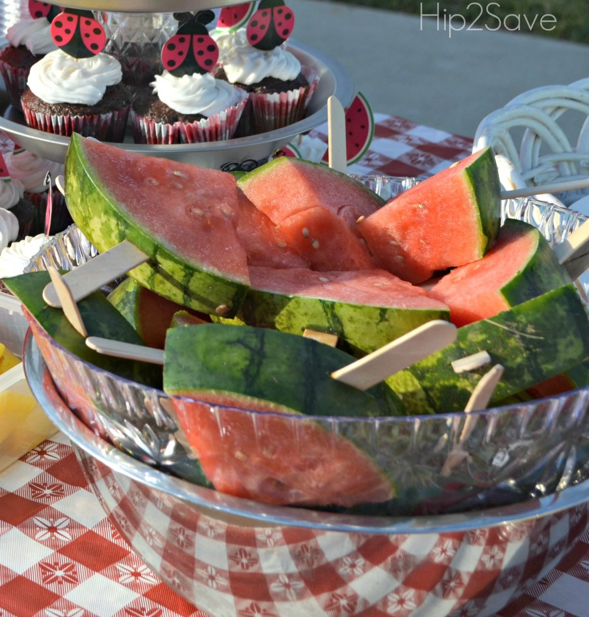 picnic party watermelon on a stick