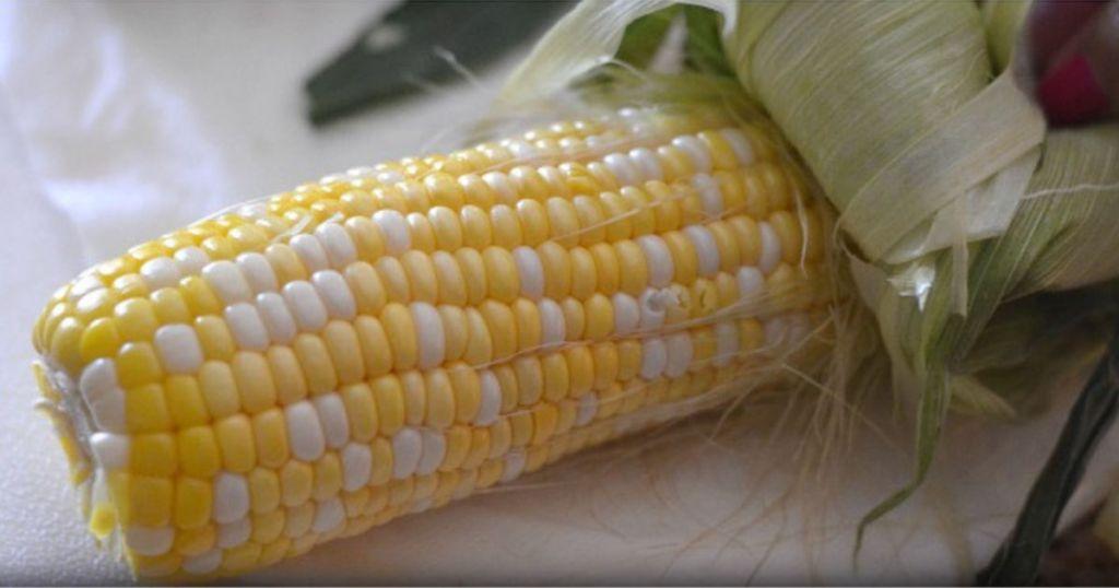 making corn on the cob