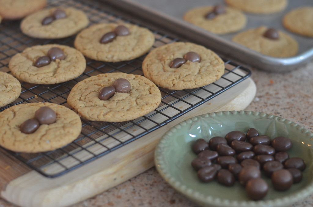 halloween spider cookie recipe