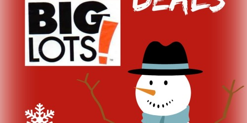 Big Lots: 2014 Black Friday Deals
