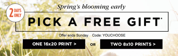 Shutterfly One Free 16x20 Print Or Two Free 8x10 Prints Just Pay