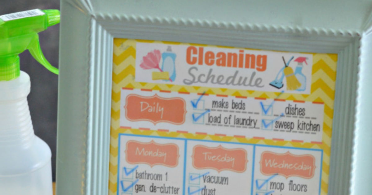 graphic regarding Cleaning Schedule Printable titled No cost Printable Weekly Cleansing Routine + Do-it-yourself All