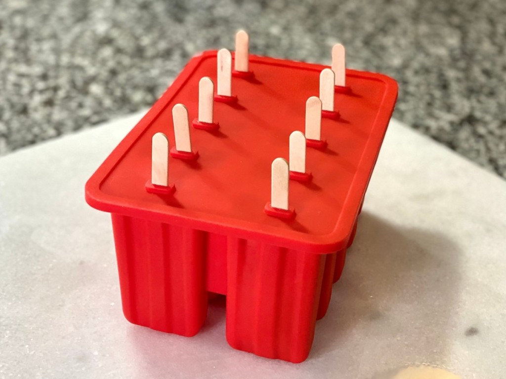 red popsicle mold with wooden sticks