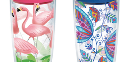 GoCause: $13.99 Gets YOU Tervis Tumbler w/ Lid AND Helps to Fund Anti-Diarrhea Kit in Zambia