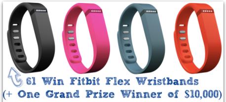 Fitbit Flex Wristbands