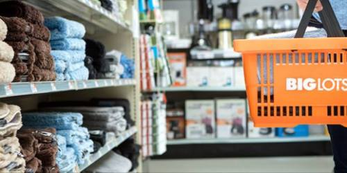 Big Lots Make-Up Days: 20% Off Entire Purchase for Participating Stores Affected by Snow Storm