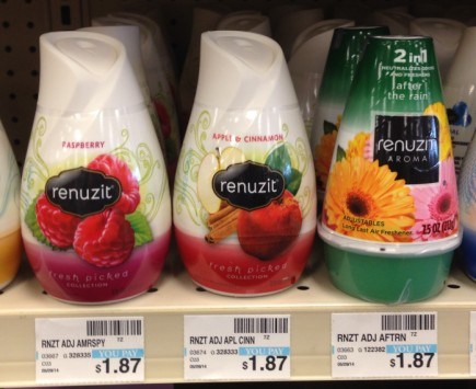 Renuzit gel air freshener CVS