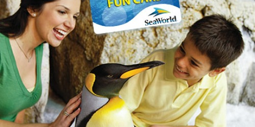 SeaWorld: FREE Unlimited Admission Fun Card + 3 FREE Single-Day Tickets for Teachers