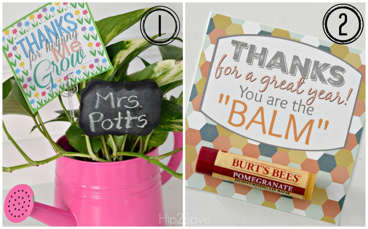image relating to You're the Balm Teacher Free Printable known as 10 Instructor Present Plans w/ Cost-free Printable Reward Tags - Hip2Help save