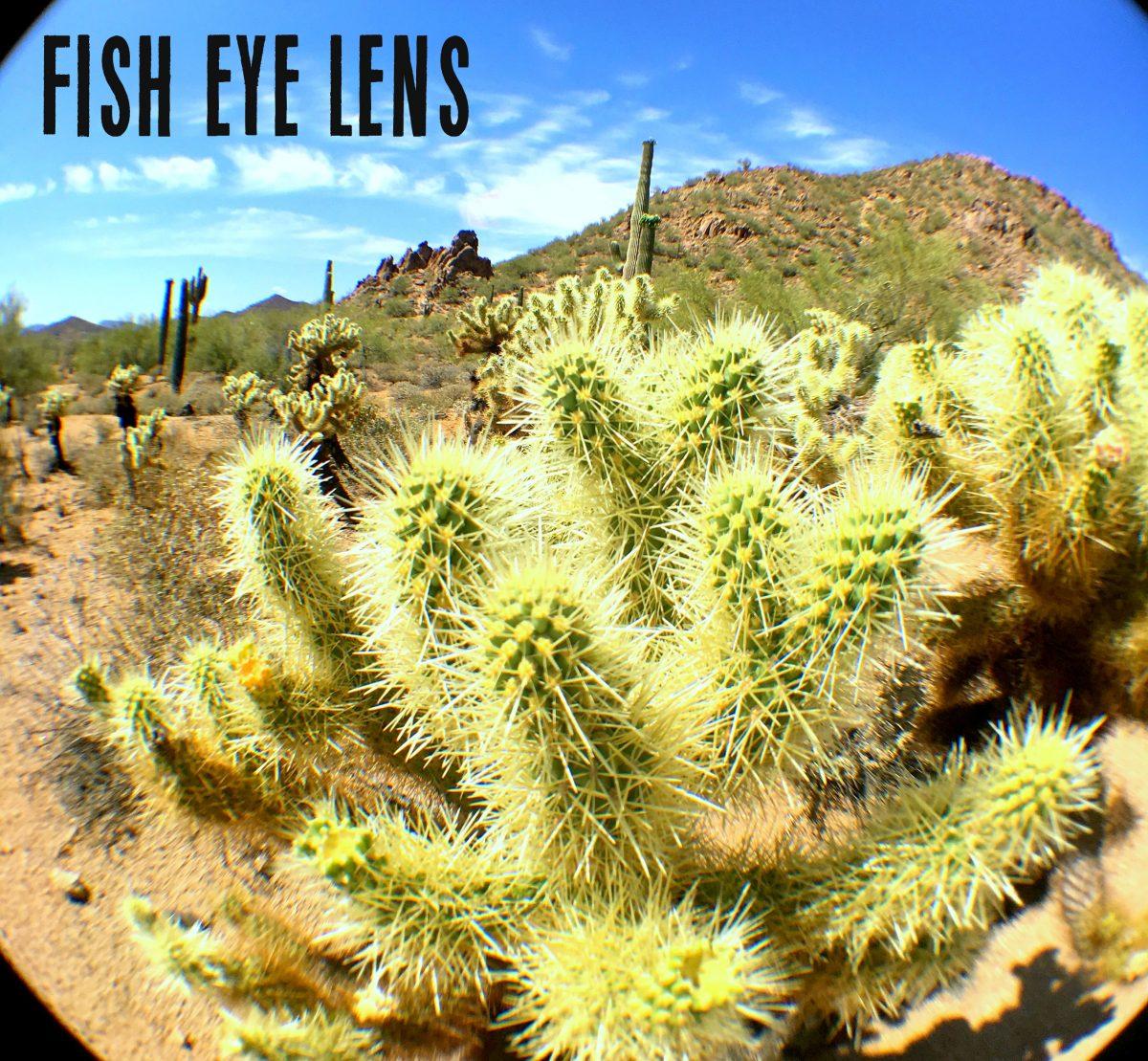 How to Use a Fish Eye External Lens Hip2Save.com