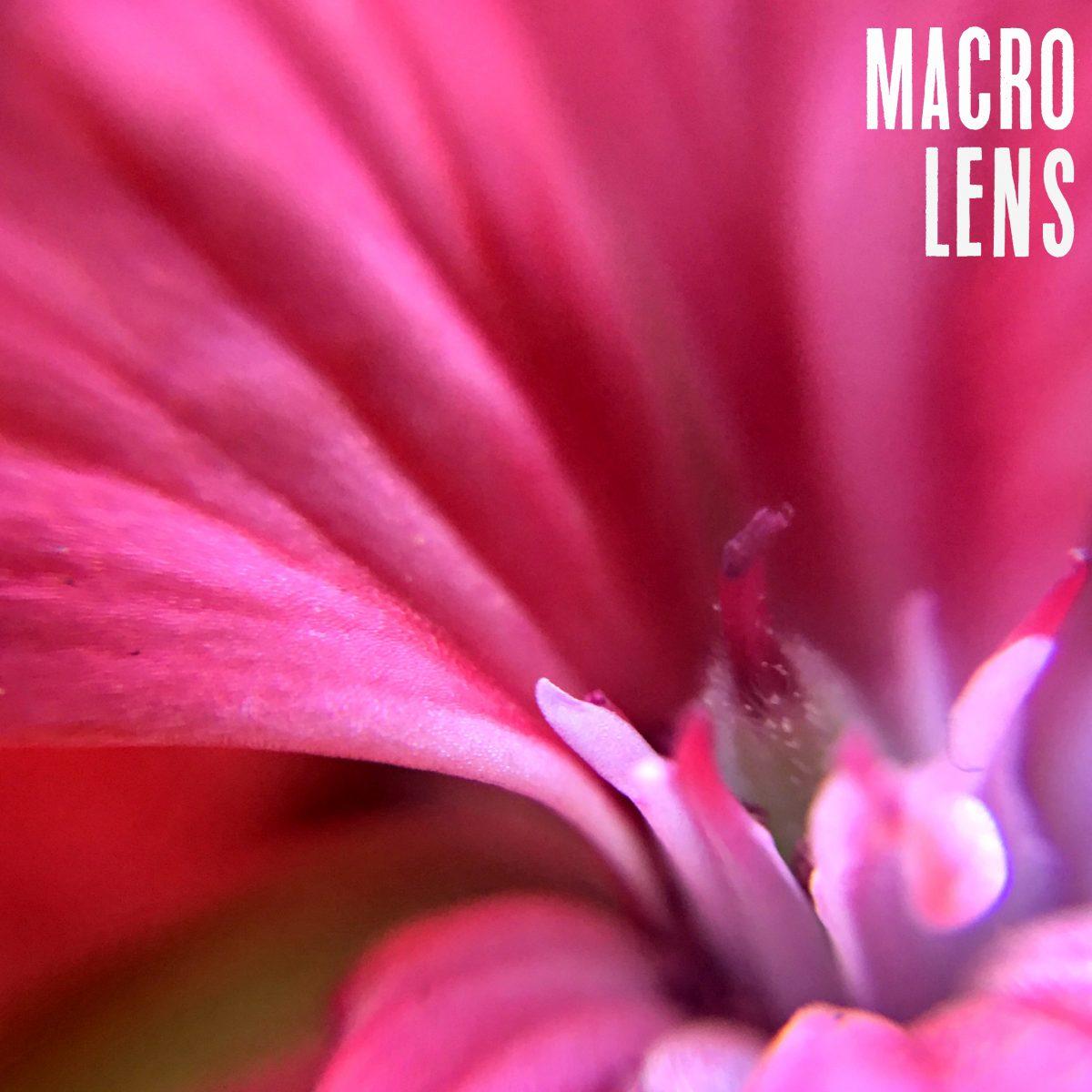 Amir Macro Lens Eample Hip2Save.com