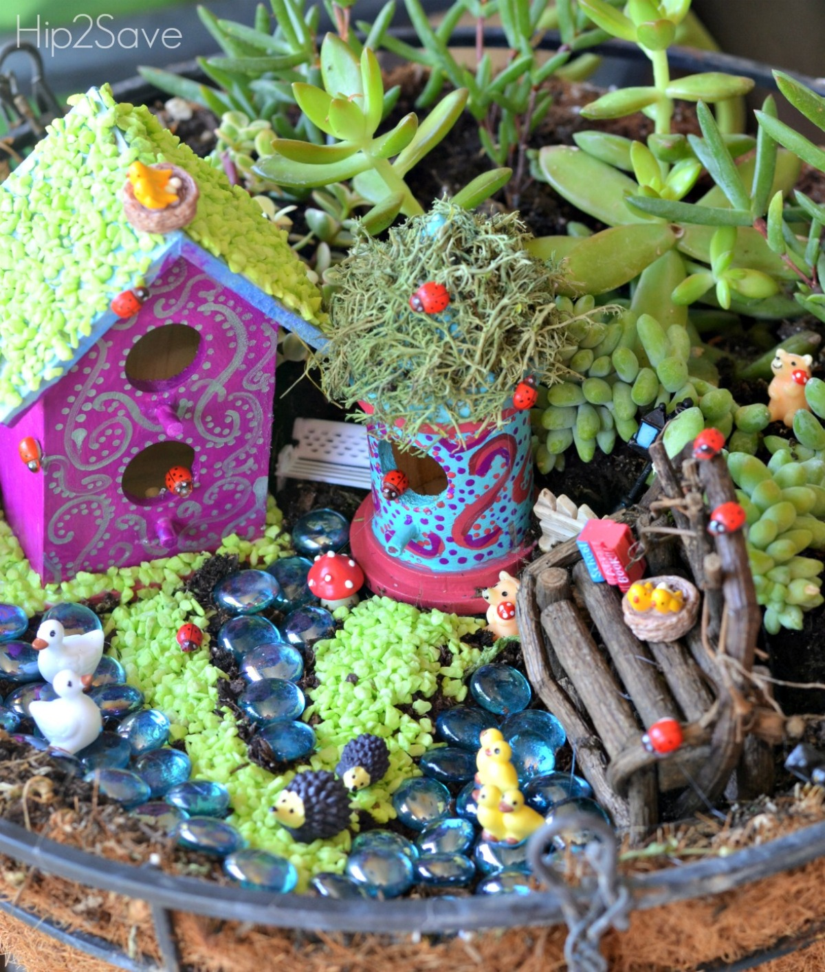 Easy Frugal Fairy Garden Hip2Save.com