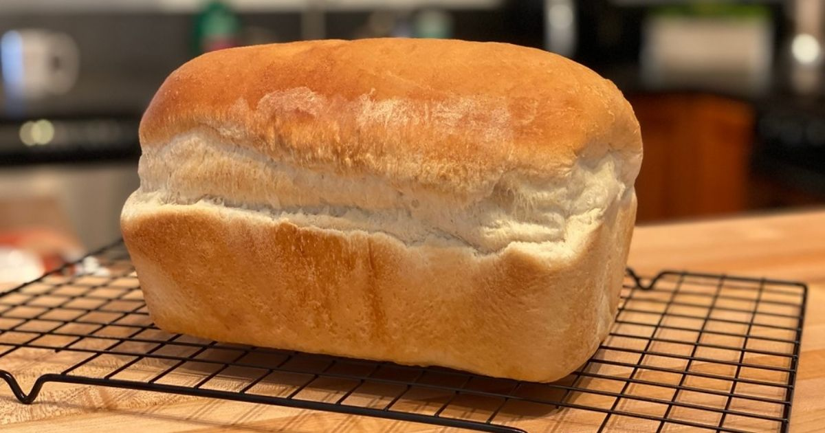 A loaf of fresh-baked bread on a baking rack