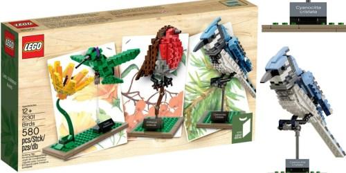 LEGO Birds Model Kit Only $34.87 (Reg. $44.99)