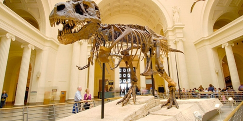 FREE Museum Day on September 23rd – Reserve Your Tickets Now