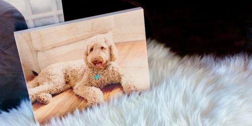 PhotoBarn: FREE Custom 5×7 Photo Board ($40 Value) – Just Pay $9.99 Shipping