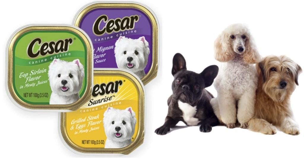 cesar-canine-cuisine