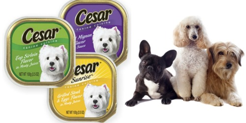 New Cesar Canine Cuisine Trays Coupon = Only 50¢ at Walgreens