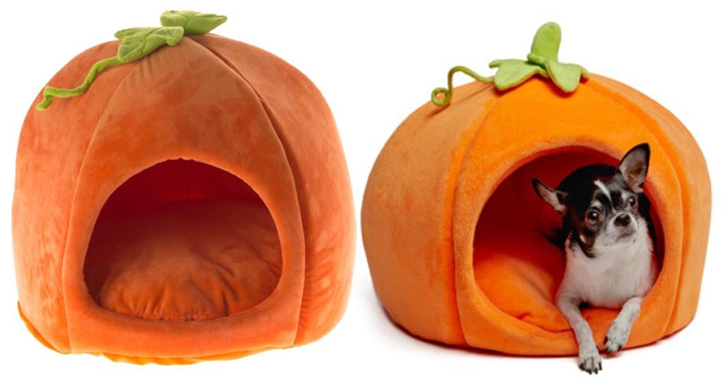 pumpkin bed