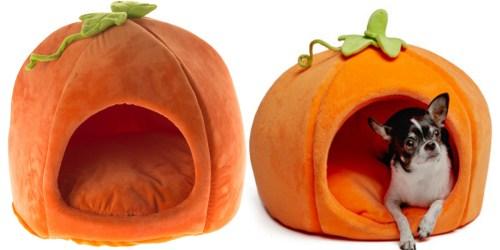 PetSmart: Martha Stewart Halloween Pumpkin Pet Bed Only $25.19 (Regularly $39.99)