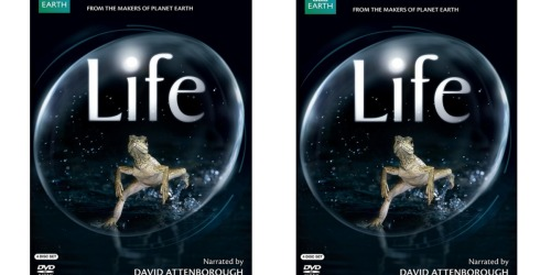Best Buy: Life 4-Disc Blu-Ray Set Just $14.99 (Regularly $59.99)