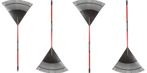 Sears: 30″ Craftsman Poly Leaf Rake Only $11.99 + Earn Shop Your Way Points