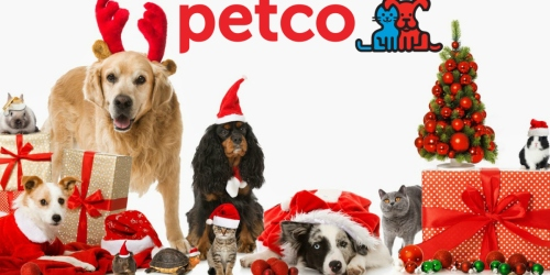 Petco.com: FREE Shipping on ANY Order = TWO Holiday Dog Cookies ONLY $3.73 Shipped + More