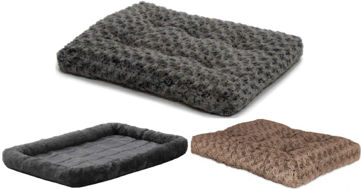 Petsmart Dog Beds >> Petsmart 60 Off Free Shipping Pet Beds Only 4 05