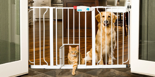 Petco: Free Shipping on All Orders = 44″ Pet Gate Only $36.99 Shipped (Reg. $79.99) & More