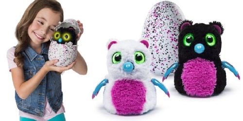 Hatchimals ALERT! Target To Have New Inventory of Hatchimals on Sunday, December 11th