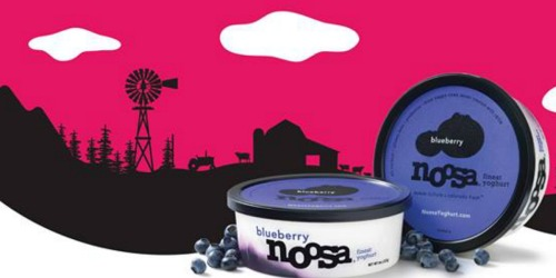 Target: Noosa Yoghurt Only 94¢ (Regularly $2.39)