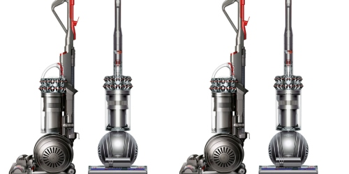 Dyson Ball Animal + Allergy Upright Refurbished Vacuum Cleaner $219.99 Shipped (Reg. $699.99)