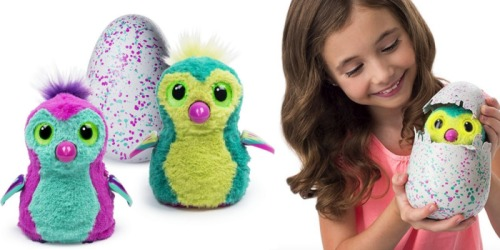 Amazon: Hatchimals Hatching Eggs $59.99 Shipped