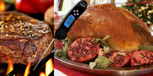 Amazon: Digital Talking Meat Thermometer Only $9.93 (Regularly $26.99)