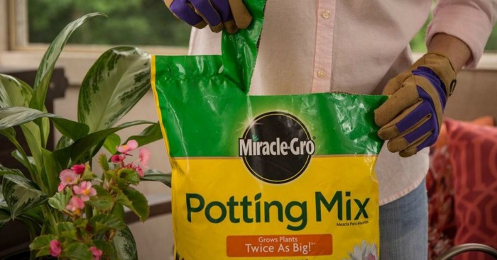 home depot large 25 quart bag of miracle gro potting mix only 5 regularly 9 hip2save. Black Bedroom Furniture Sets. Home Design Ideas