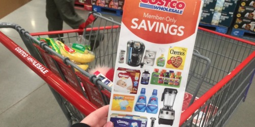 Costco Shoppers! Great Buys on Heinz Ketchup, Go-Gurt, Ziploc, Starbucks Coffee & More