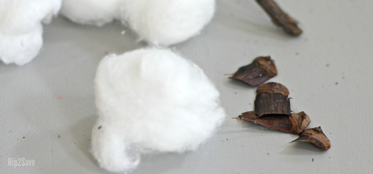 cotton balls and bits of cotton stem