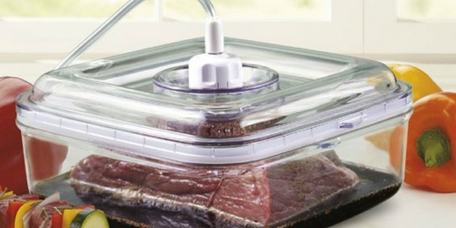 FoodSaver GameSaver Quick Marinator Only $11.99 Shipped (Regularly $21.99)