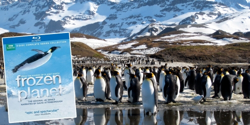 Best Buy: Frozen Planet 3-Disc Complete Series Blu-ray Set Only $9.99 (Reg. $42.99) & More