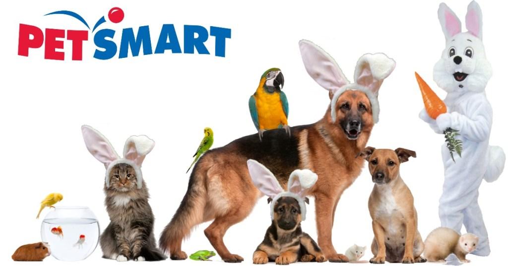 PetSmart Easter