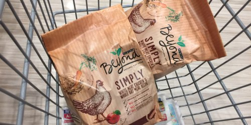 WOW! Purina Beyond Dog Or Cat Food 3-4 Lb Bags 49¢ Each After Points at Rite Aid