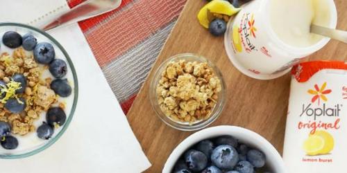 NEW Yoplait Original Yogurt Coupon + Yummy Yogurt Kabobs Recipe