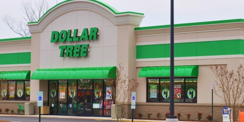 10 FUN Dollar Tree Deals That Don't Require Coupons
