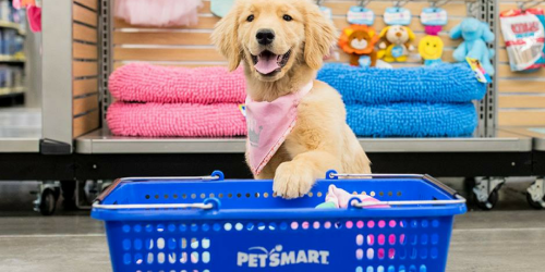 PetSmart: 30% Off Single Item = Dog Toys ONLY 69¢ + BIG Savings On Precious Litter, Greenies & More