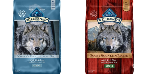 Nice Savings on Blue Buffalo Dog Food & Treats